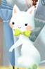 白猫 クレールの画像